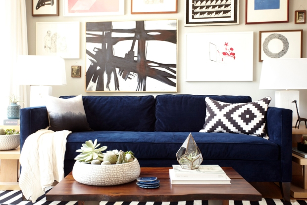 cosy-navy-blue-sofa-with-trina-turk-cushions-feat-exotic-succulent-planter-coffee-table-centrepiece-idea